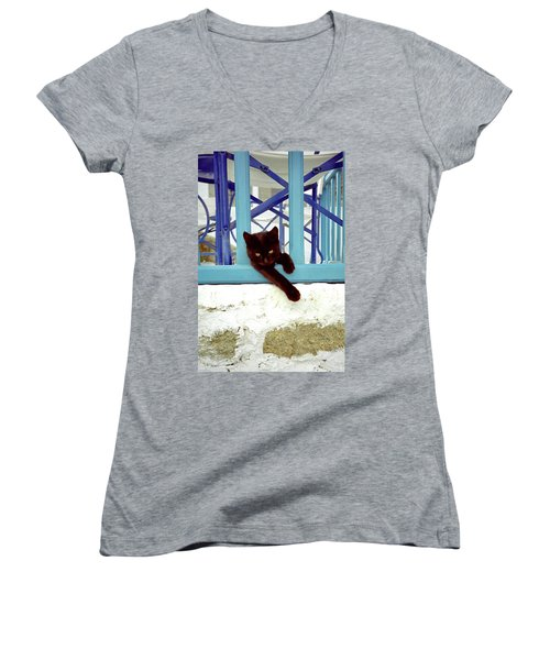 Kitten With Blue Rail Women's V-Neck