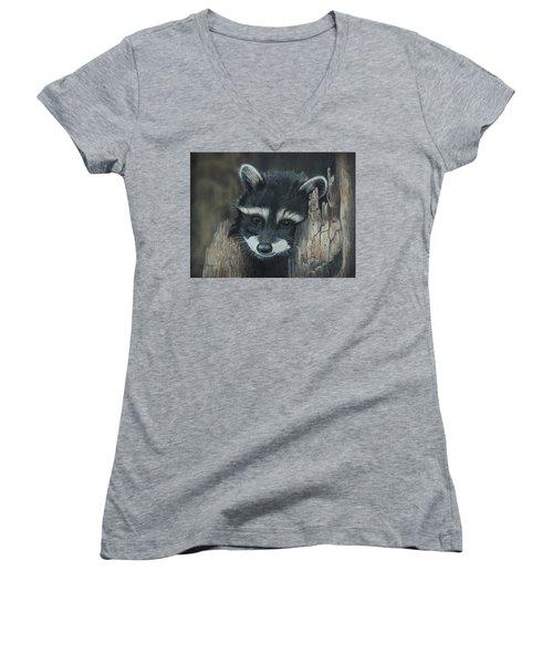 Kit...the Baby Raccoon Women's V-Neck T-Shirt