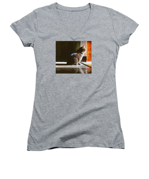 Kitty In The Light Women's V-Neck (Athletic Fit)