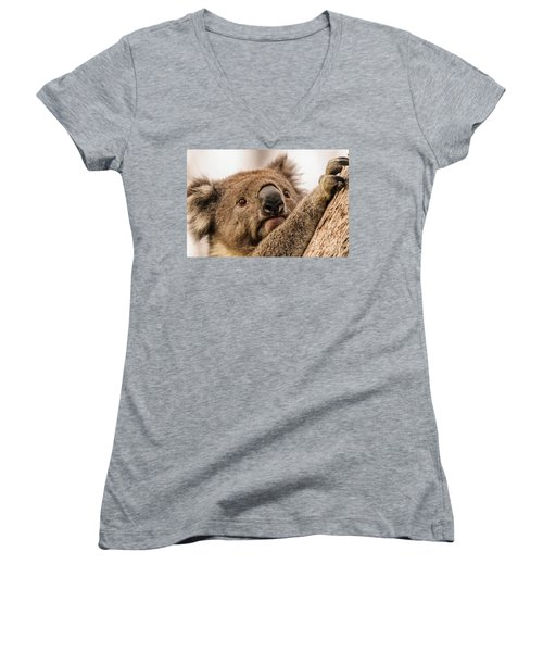 Koala 3 Women's V-Neck T-Shirt (Junior Cut) by Werner Padarin