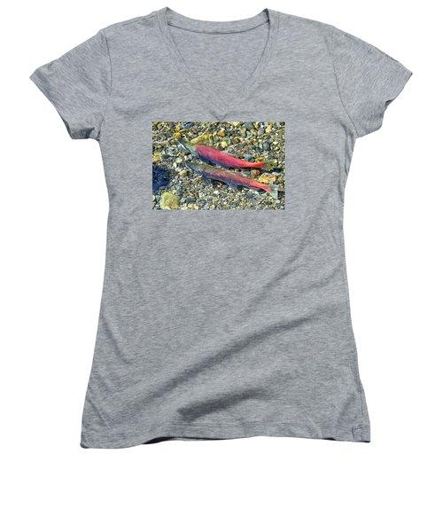 Women's V-Neck T-Shirt (Junior Cut) featuring the photograph Kokanee Salmon At Taylor Creek by David Lawson
