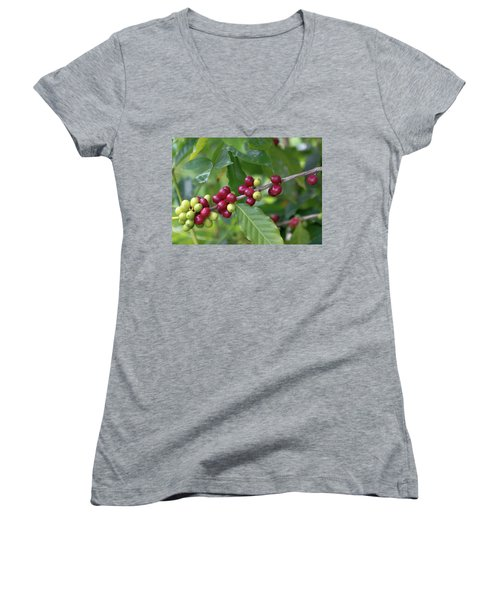 Kona Coffee Cherries Women's V-Neck