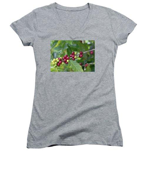 Kona Coffee Cherries Women's V-Neck