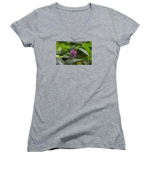 Kudzu Women's V-Neck T-Shirt (Junior Cut) by Lew Davis
