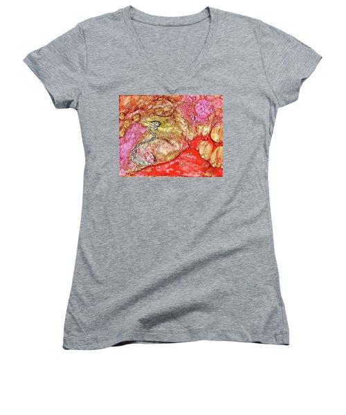 Kyoto Spring Women's V-Neck T-Shirt