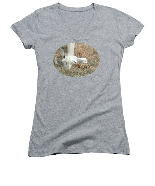 L Is For Lamb Women's V-Neck (Athletic Fit)