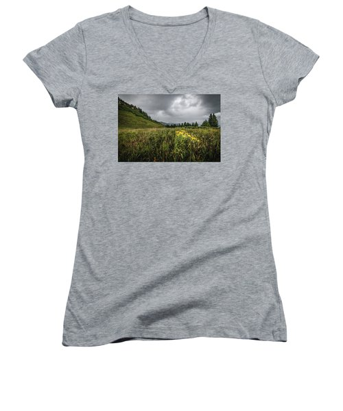 La Plata Wildflowers Women's V-Neck