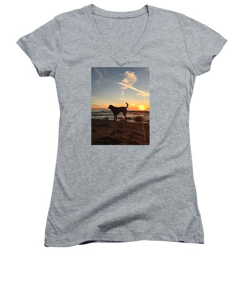 Labrador Dreams Women's V-Neck T-Shirt