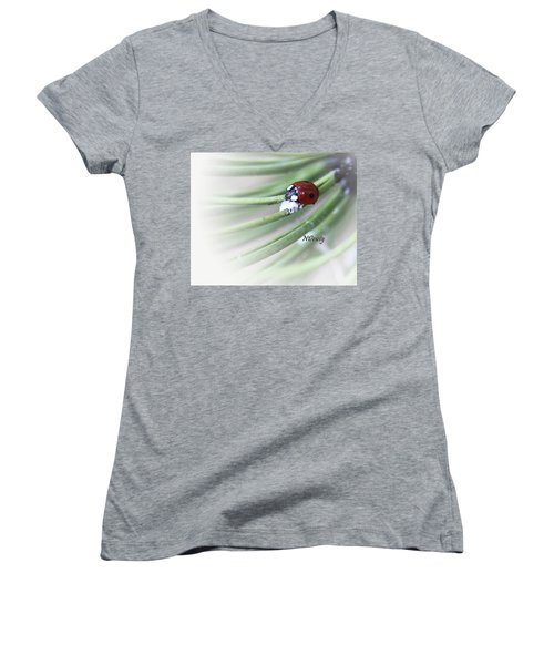 Ladybug On Pine Women's V-Neck