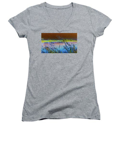 Lake II Women's V-Neck T-Shirt (Junior Cut) by Donna G Smith