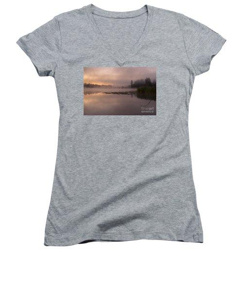 Lake Marsh Women's V-Neck T-Shirt
