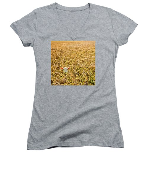 Lamb With Barley Women's V-Neck T-Shirt (Junior Cut) by Meirion Matthias