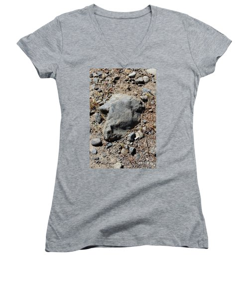 Women's V-Neck T-Shirt featuring the photograph Lambchop by Marie Neder