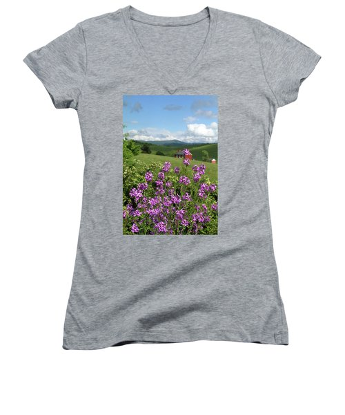 Landscape With Purple Flowers Women's V-Neck