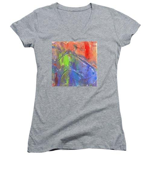 Landslide Women's V-Neck T-Shirt (Junior Cut) by Phil Strang