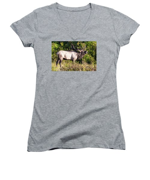 Large Bull Elk Bugling Women's V-Neck