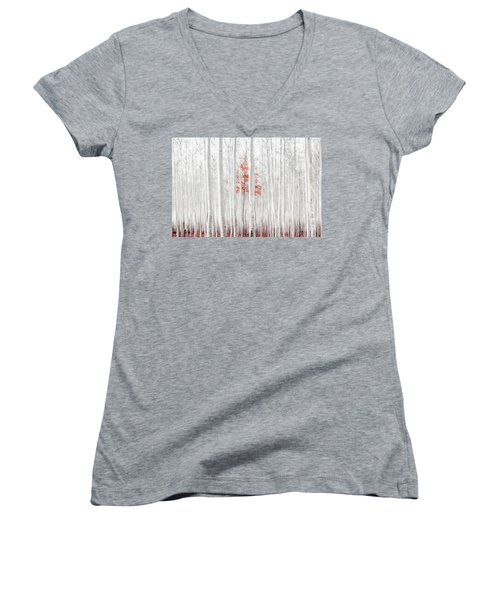 Last Of Its Kind Women's V-Neck T-Shirt