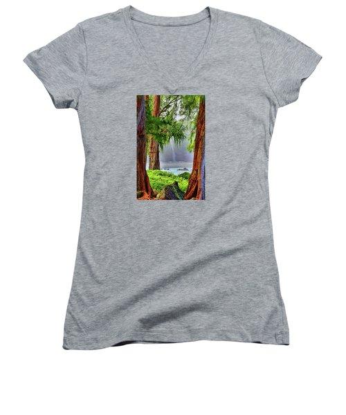 Women's V-Neck T-Shirt (Junior Cut) featuring the photograph Laupahoehoe Hawaii by DJ Florek