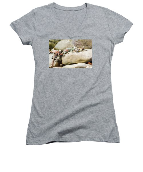 Lava Lizard On Galapagos Islands Women's V-Neck T-Shirt