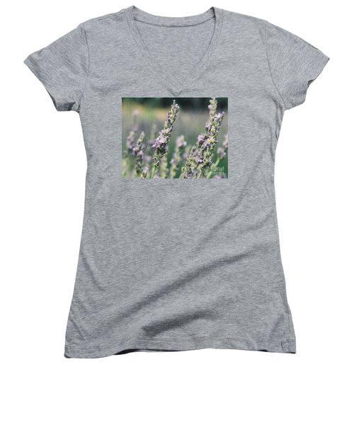 Women's V-Neck T-Shirt (Junior Cut) featuring the painting Lavender by Eric  Schiabor