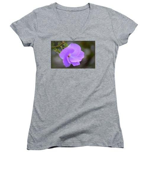 Women's V-Neck T-Shirt featuring the photograph Lavender Flower by AJ Schibig
