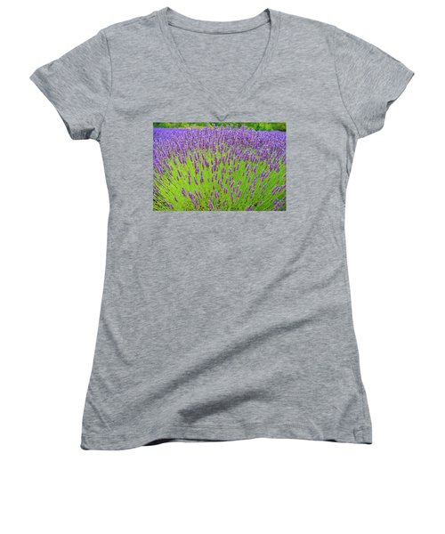 Women's V-Neck T-Shirt (Junior Cut) featuring the photograph Lavender Gathering by Ken Stanback