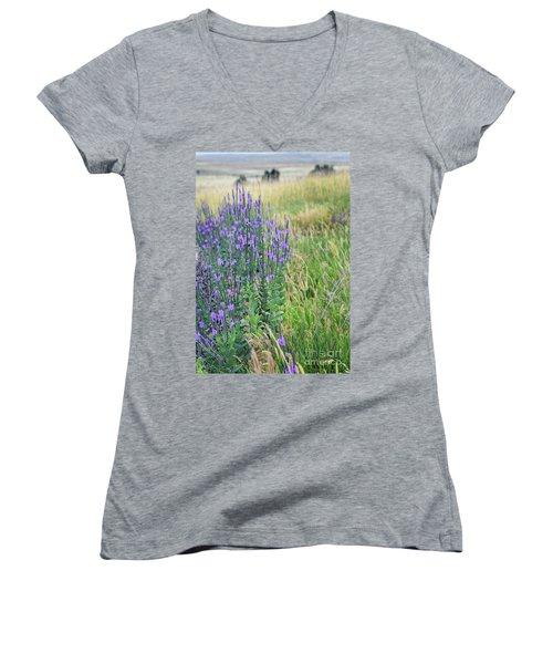 Verbena Hills Women's V-Neck T-Shirt