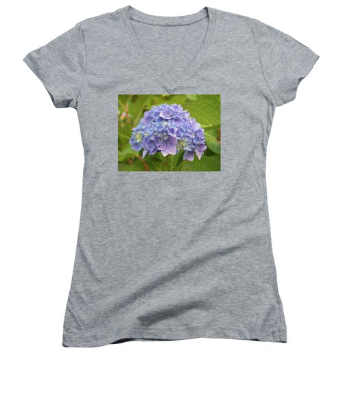 Lavender Hydrangea Women's V-Neck (Athletic Fit)