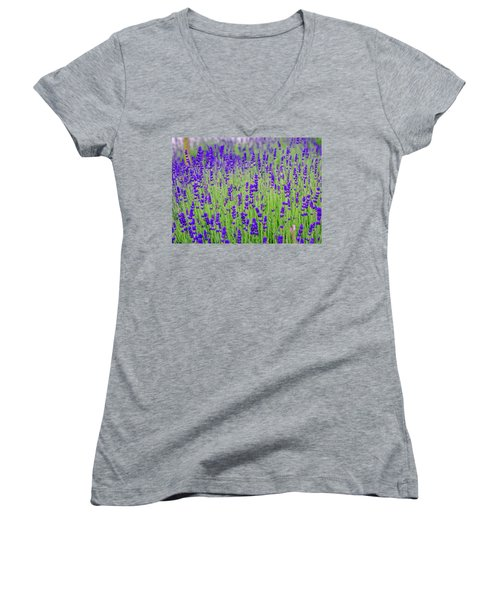 Lavender Women's V-Neck T-Shirt (Junior Cut) by Rainer Kersten