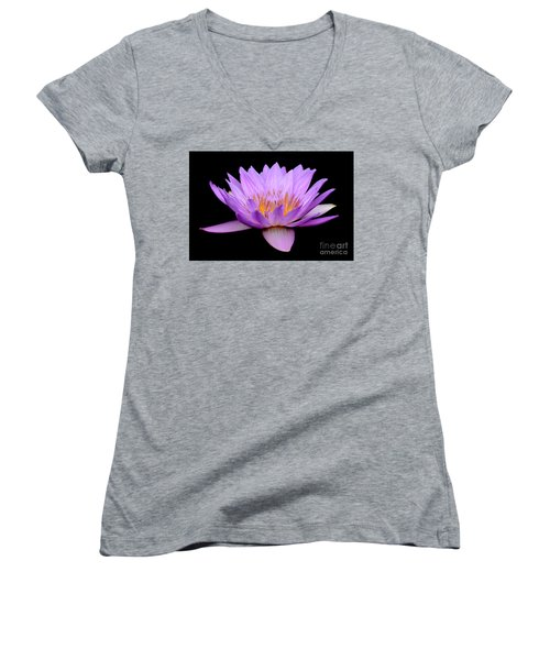 Lavender Tropical Day Lily Women's V-Neck T-Shirt