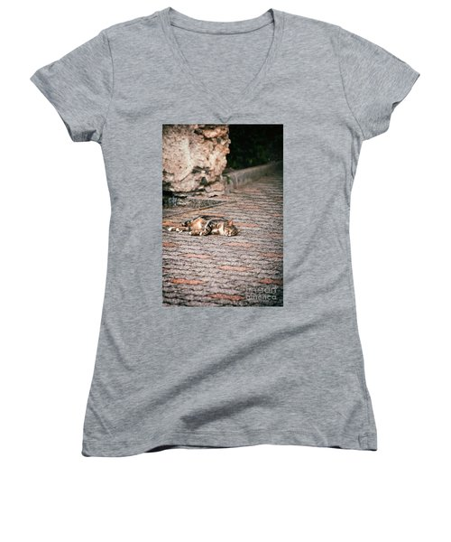 Women's V-Neck T-Shirt (Junior Cut) featuring the photograph Lazy Cat    by Silvia Ganora
