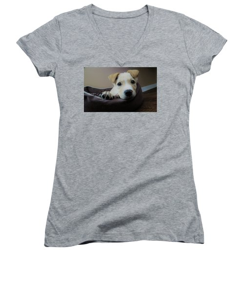 Lazy Day Women's V-Neck T-Shirt