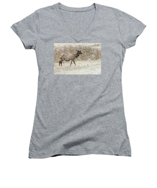 Lead Cow Women's V-Neck (Athletic Fit)
