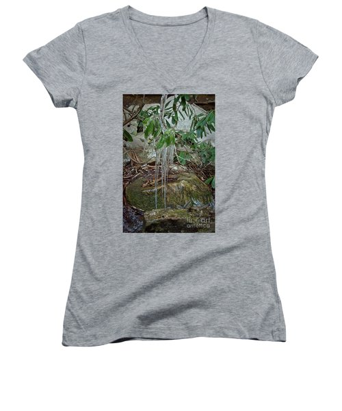 Leaf Drippings Women's V-Neck