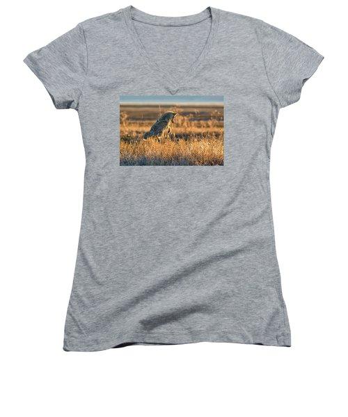 Leap Of Faith Women's V-Neck T-Shirt (Junior Cut) by Scott Warner