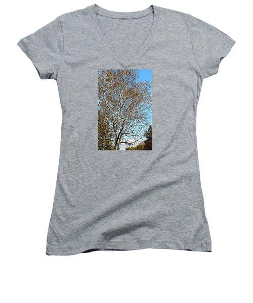 Leftover Women's V-Neck T-Shirt (Junior Cut) by Jana E Provenzano