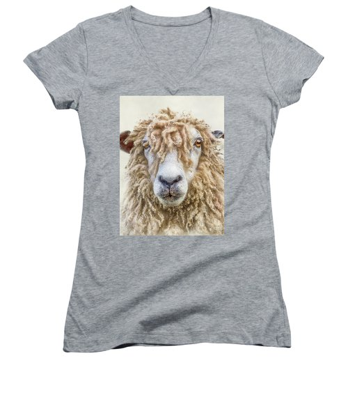 Leicester Longwool Sheep Women's V-Neck T-Shirt (Junior Cut) by Linsey Williams