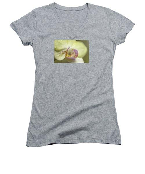 Lemon Lovlilness Women's V-Neck T-Shirt (Junior Cut) by Mary Angelini