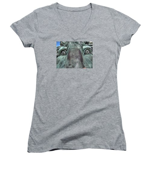 Leo Eyes Women's V-Neck T-Shirt (Junior Cut) by Yury Bashkin