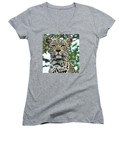 Leopard Face Women's V-Neck (Athletic Fit)