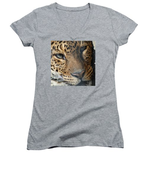 Women's V-Neck T-Shirt (Junior Cut) featuring the photograph Leopard Face by Richard Bryce and Family