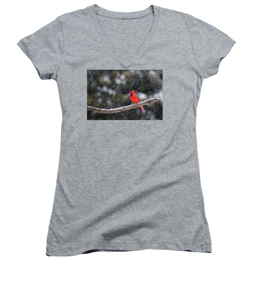 Women's V-Neck T-Shirt (Junior Cut) featuring the photograph Let It Snow by Mircea Costina Photography