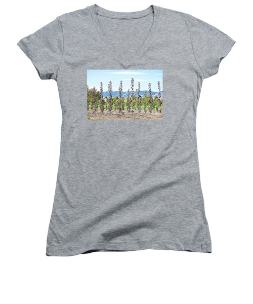 Life On A Tree Farm-foothills View #1 Women's V-Neck