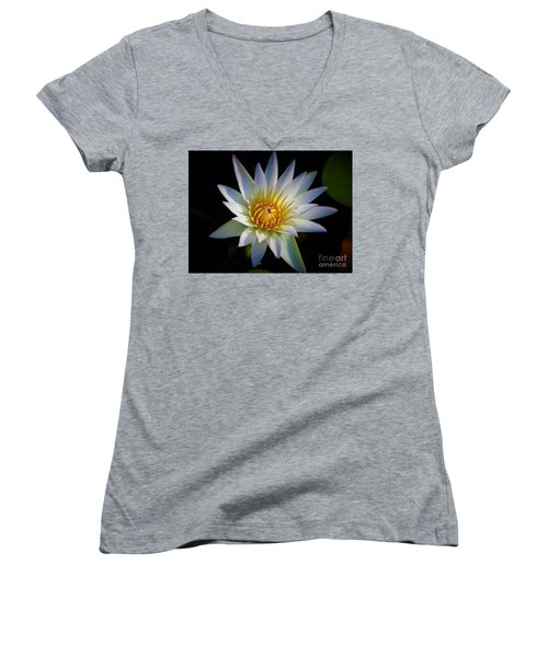 Light Blue Water Lily Women's V-Neck T-Shirt (Junior Cut) by Chad and Stacey Hall
