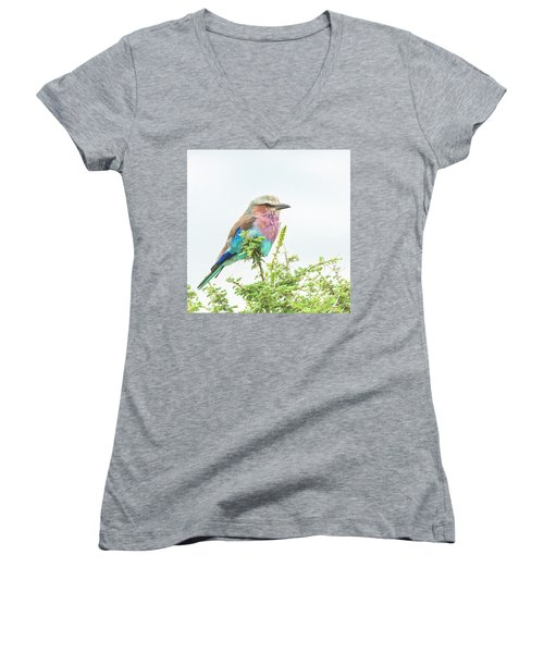 Lilac Breasted Roller. Women's V-Neck