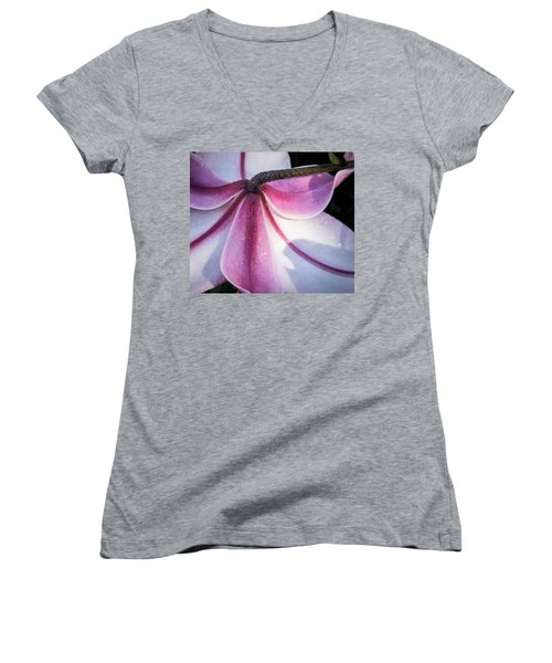 Women's V-Neck T-Shirt (Junior Cut) featuring the photograph Lilies Backside by Jean Noren