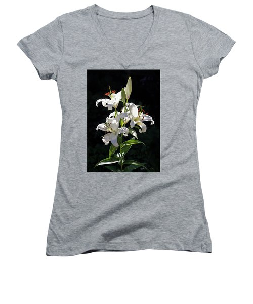 Lilies In The Sun Women's V-Neck (Athletic Fit)