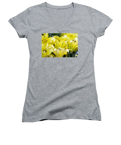 Lilies Of The Field #2 Women's V-Neck T-Shirt