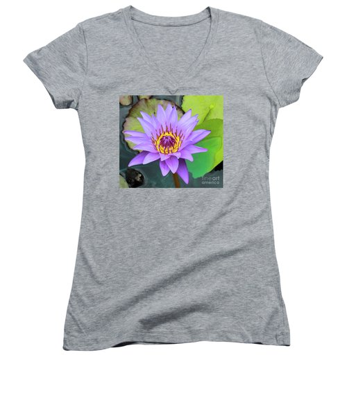Lilly In Purple  Women's V-Neck T-Shirt