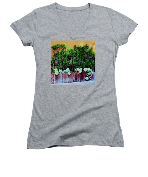 Line Of Succulents And Red Fence Women's V-Neck